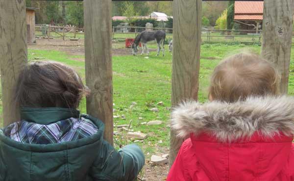 Con Lucía de escapada a La Rioja y ¡vemos burros!