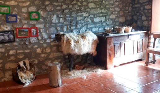 caserio-erreizabal-dia-del-pastorcillo