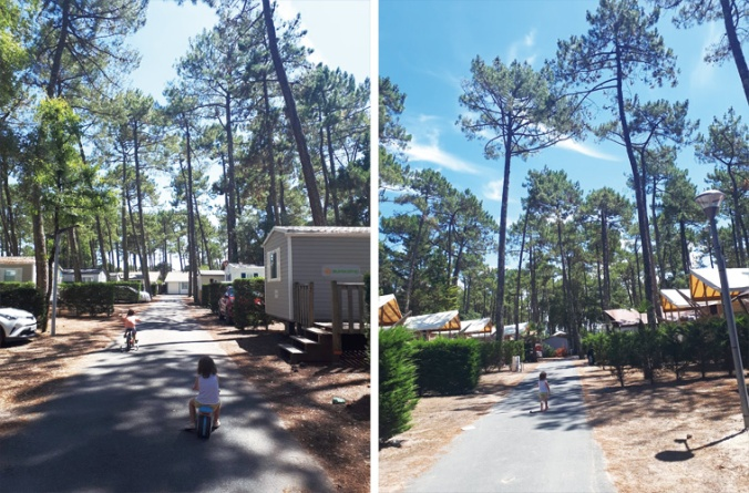 camping-le-vieux-port-messanges
